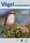 images pictures news cover vid2013 150px